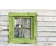 Bob Pitzel - Green Window Revisited Study